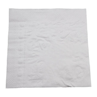 Dinner Napkin Premium White 2 Ply (100)